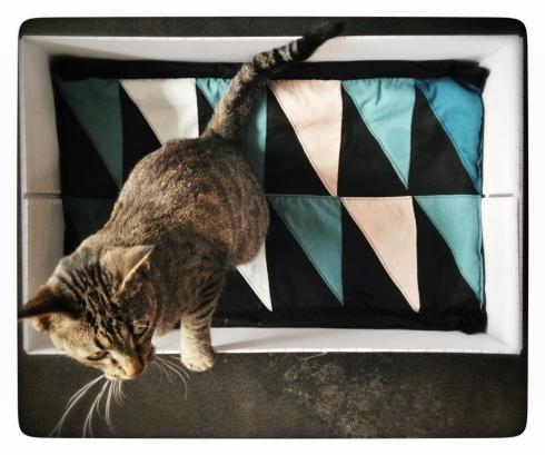 Katten Karlas kattekasse med tilhørende kattetæppe